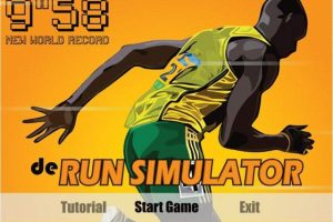 de Run Simulator