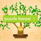 """""""Puzzle Bonsai"""" Review"""